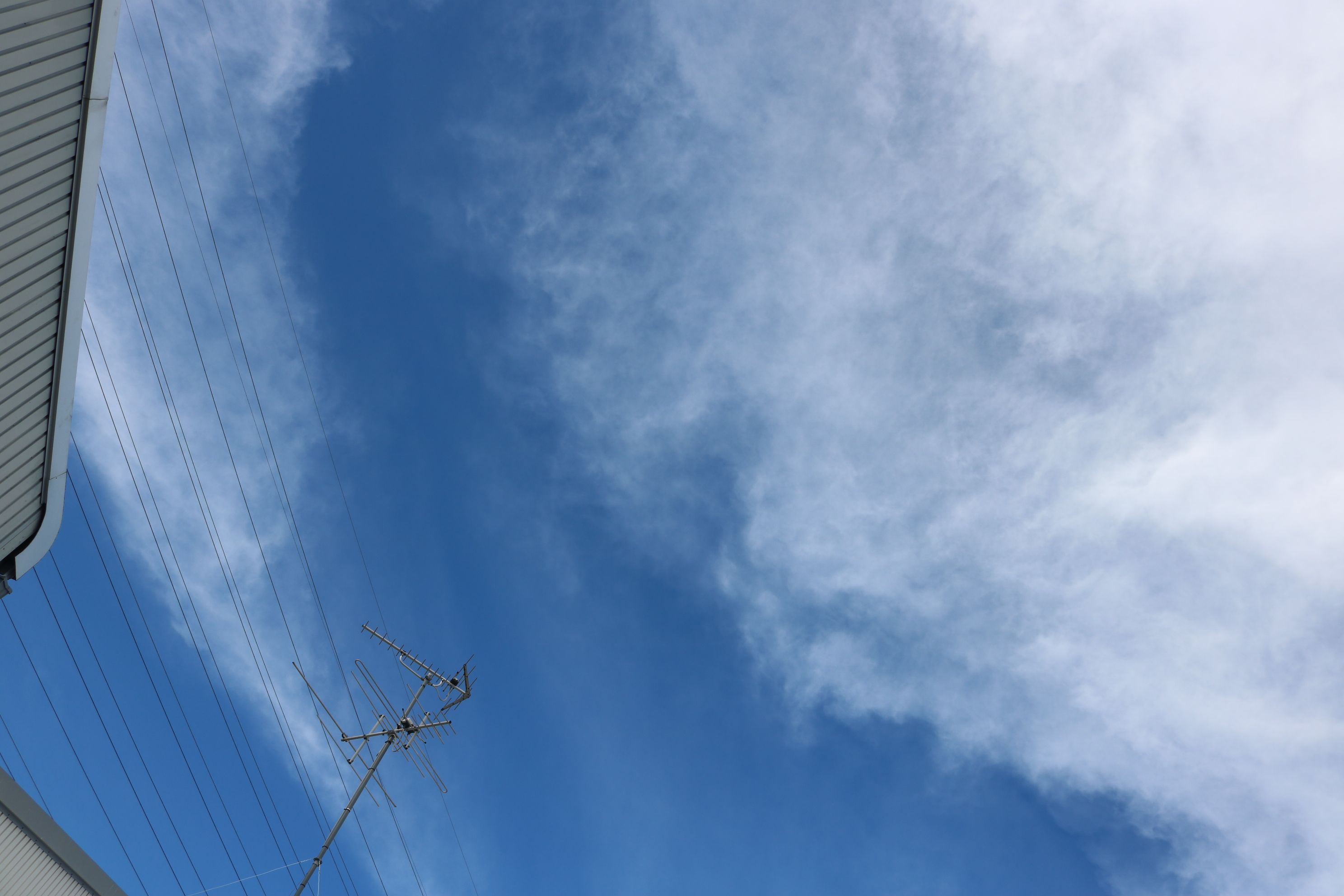 ★GarageSuccess 摂津本店★カスタムカー専門店!8月17日